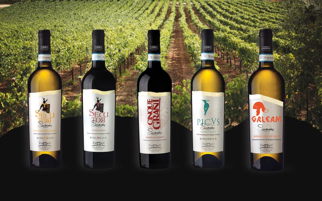 """wine-design-etichette-di-vino-personalizzate cantina biologica """"Masseria Vigne Vecchie"""